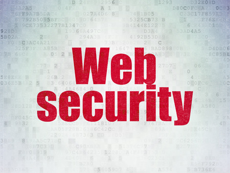 privat: Safety concept: Painted red word Web Security on Digital Data Paper background Stock Photo