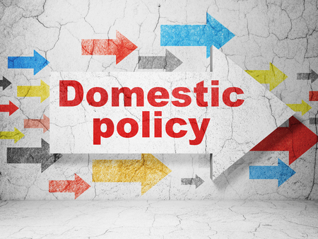 text room: Political concept:  arrow with Domestic Policy on grunge textured concrete wall background, 3D rendering