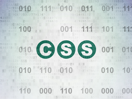 css: Database concept: Painted green text Css on Digital Data Paper background with Binary Code Stock Photo