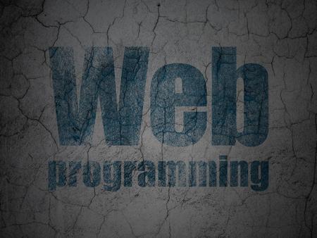 Web development concept: Blue Web Programming on grunge textured concrete wall background