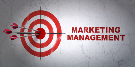 Success advertising concept: arrows hitting the center of target, Red Marketing Management on wall background, 3D rendering