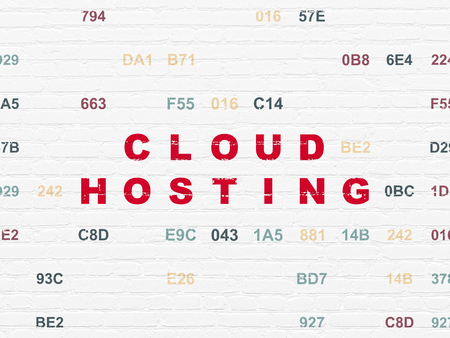 Cloud computing concept: Painted red text Cloud Hosting on White Brick wall background with Hexadecimal Code Stock Photo