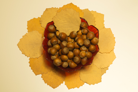 Hazelnuts in a bowl with leaves. autumn background