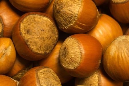 Hazelnuts texture background. filbert. nuts macro
