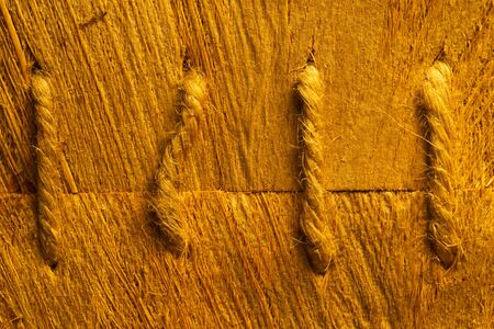 Rough wood macro texture. brown wooden material background