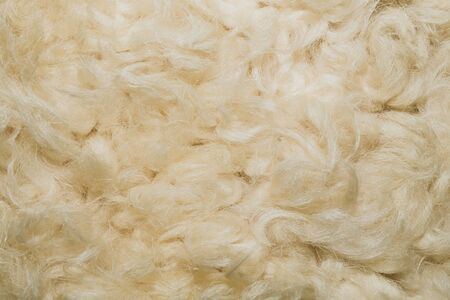 White shaggy fur texture background. beige wool texture Фото со стока