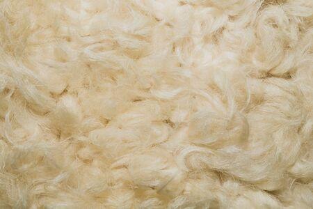 White shaggy fur texture background. beige wool texture Standard-Bild
