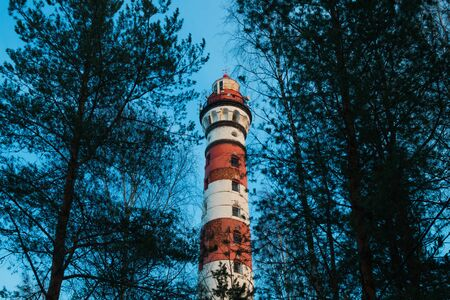 Lighthouse in the forest between the trees. red and white lighthouse background Фото со стока