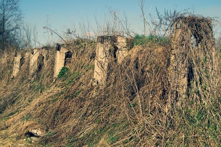 Overgrown ruins in the forest. old abandoned construction. rural landscape