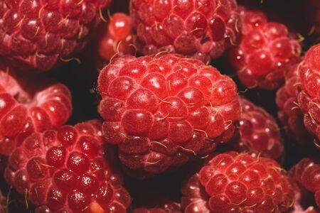Fresh raspberry close up. ripe raspberries. red berry macro background Archivio Fotografico