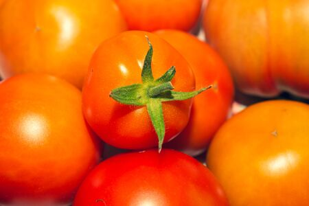 Tomatoes background. organic vegetables. healthy food vegetarian nutrition