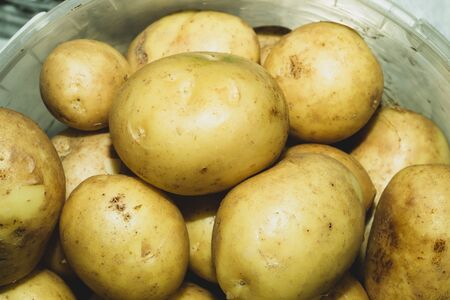 Fresh young potatoes. raw vegetables. healthy nutrition. vegetarian food