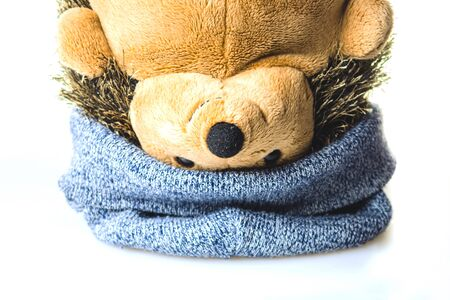 Plush hedgehog in a hat upside down. soft toy on a white background