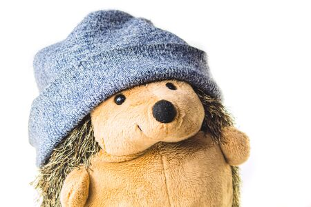 Plush hedgehog in a hat. soft toy on a white background