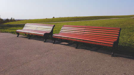 Empty benches in the park. sunny day in autumn