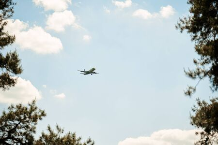 a plane flying in a blue sky framed by trees