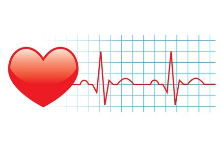 ekg: illustration of electrocardiogram on white background