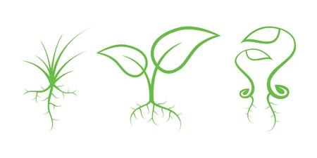 germination: Iconos de la naturaleza