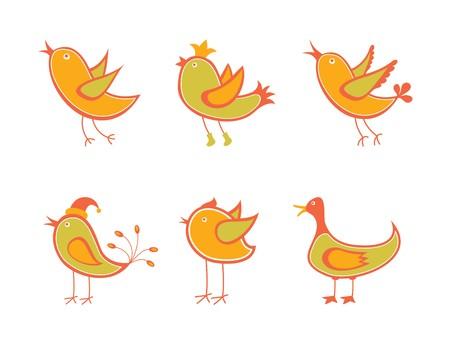 beaks: Uccelli