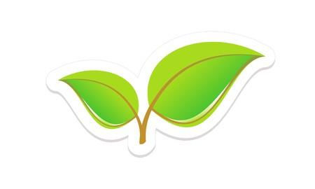 young leaf: Green Leaves aislado en blanco Vectores