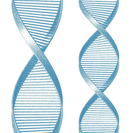 DNA Isolated on White Background Stock Photo - 21892955