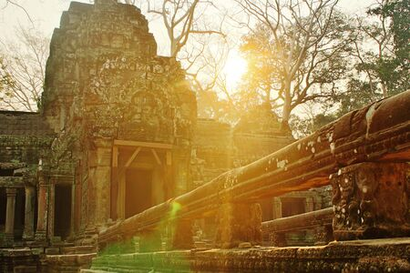 Scenic Ta Prohm Temple at Riem Reap