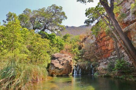 Magnificent freshwater pond in the forest of Blyde River Canyon (Mpumalanga Province, South Africa) with small waterfall, a cliff and surrounded rainforest. The spot is reached along Leopard Trail.