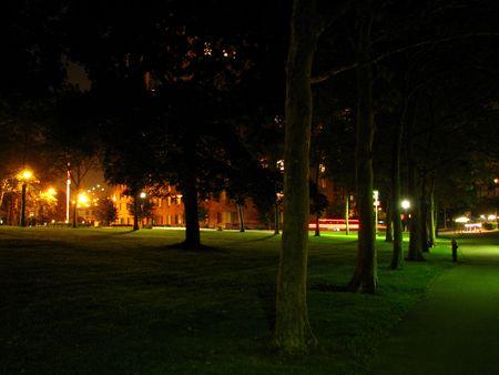 Night park Zdjęcie Seryjne