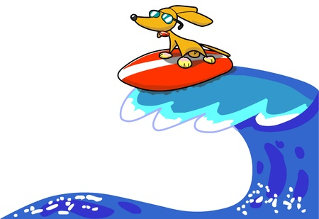 Fuffy the surfer Stock Photo - 9329267