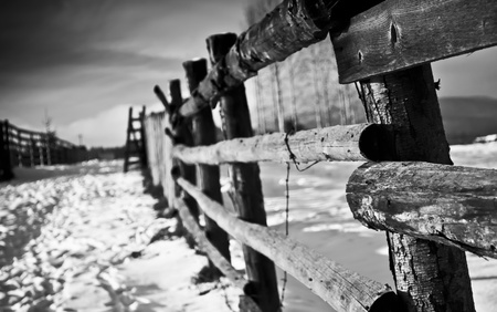 Rural fence in black and wihite photo