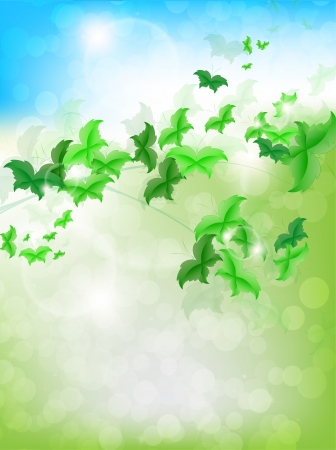 Spring Background with leaf Butterflies on a fresh background Vector