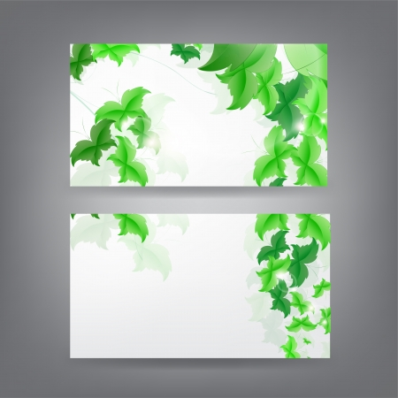 Environment theme business card template with green Butterfly leaf. Stock Vector - 18384280