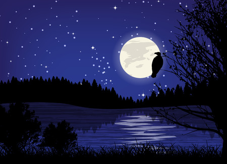 night moon: Beautiful minimalistic mountain view landscape by night. Illustration