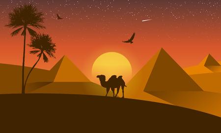 birds desert: Landscape desert silhouette nature palm sunset camel and flying birds.