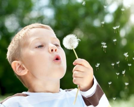 kindergarden: Beautiful cute boy in the park blowing on dandelion in summer time