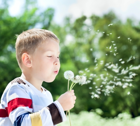 Beautiful cute boy in the park blowing on dandelion in summer time photo