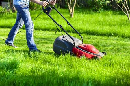 Man moves with lawnmower    mows green grass photo