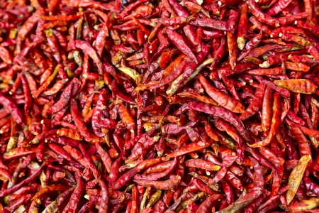 pungency: Dry red chili pepper background