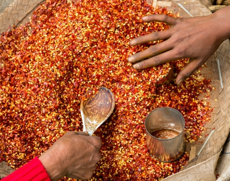 pungency: Red Chili pepper powder with seeds. Womans hands in motion are filled into jars pepper