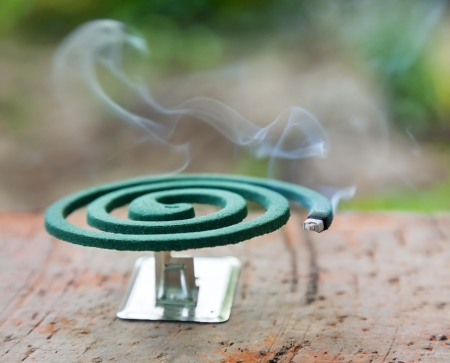 Burning mosquito coil is an anti-mosquito repellent photo