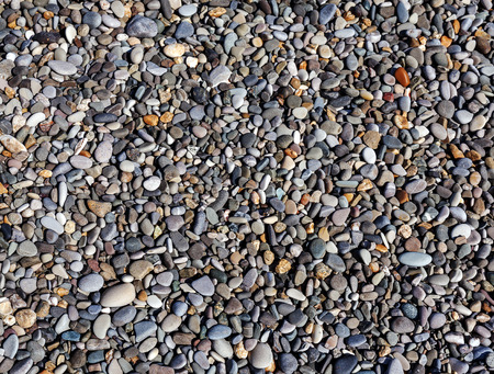Various sea pebbles on the coastline photo