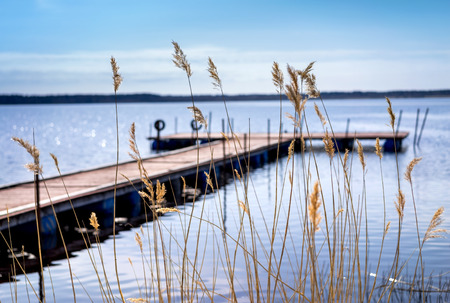 pier: Pier for pleasure and fishing boats on shore of Lake Ladoga in Karelia. Soft focus. In the foreground the tall grass