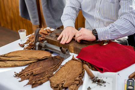cigar: Man processing the tobacco leaves and making cigars with simple tools