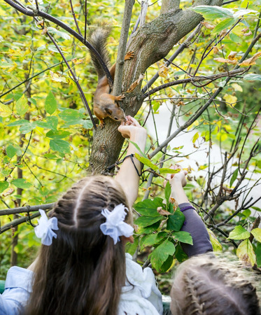 feeds: Two happy girls feeds a little squirrel in autumn park