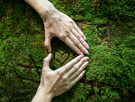 womans hands: Womans hands folded in the shape of a heart on rock with a moss. nscription of names and heart. Inscription of male and female name with a heart  carved in stone