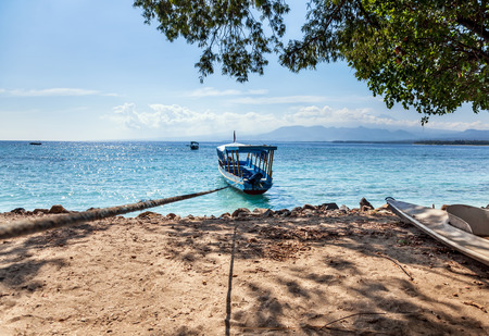 ocean fishing: Fishing powerboat tied rope along the sea shore and tree hanging over the ocean
