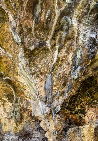 La textura de los acantilados de roca mojada con acumulación de sales y sedimentos cerca de la costa