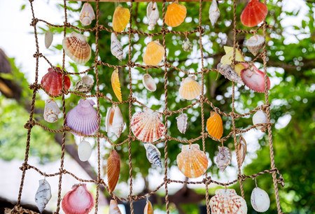 Collection of marine seashells hanging on grid braided from the ropes of closeup Stock Photo