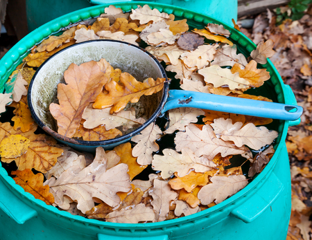sorrowfully: Ladle in barrel with water and oak leaves in autumn Stock Photo