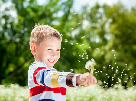 Portrait of a smiling funy boy in the park with shredded the bouquets of dandelions in the meadow in spring time Stock Photo